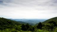Shenandoah Valley in Summer