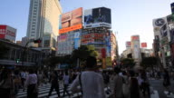 Shibuya scramble intersection of evening