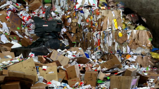 PAN Shifting Cardboard Waste In A Recycling Center