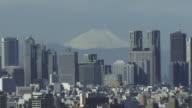 ZO, WS, HA, Shinjuku District with Mt Fuji in background, Tokyo, Japan