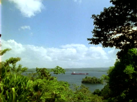 WA ship in Panama canal, moves left to right, trees in foreground.