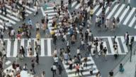 Shoppers on a Cross Street Crossing in Shinjuku, Tokyo