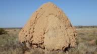 MS Shot ants hill at Wide Landscape / Perth, Australia