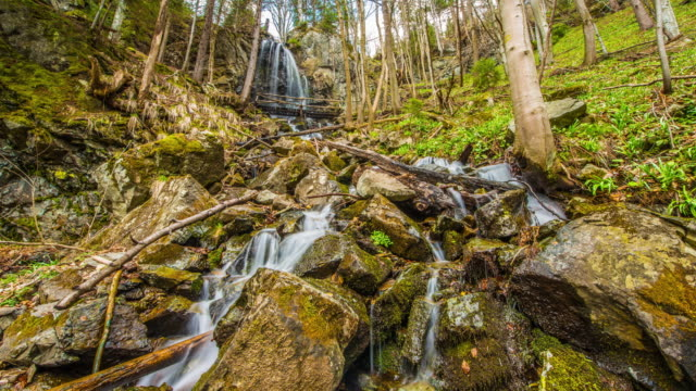 T/L 8K shot of a waterfall in the forest