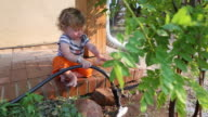MS Shot of baby boy watering the tree with hose / Santa Fe, New Mexico, United States