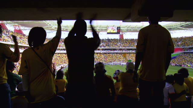 MS Shot of Bafana Bafana supporters watching soccer match / Johannesburg, Gauteng, South Africa