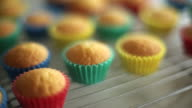 CU PAN Shot of baked cupcakes cooling on baking rack / Auckland, New Zealand