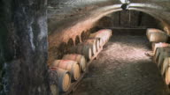 MS PAN Shot of barrel cellar at winery / Ehn, Moselle, Luxembourg