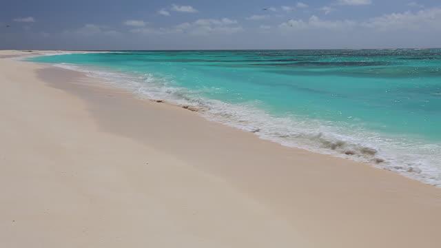 MS Shot of Beach / Bird Island, Seychelles