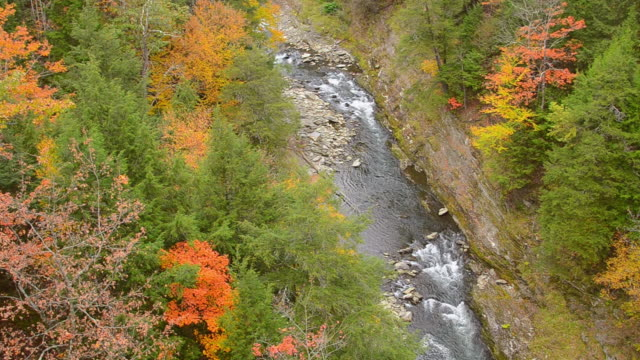 MS Shot of beautiful gorge at Quechee State Park with fall foliage colors and river in October from bridge over gorge / Woodstock, Vermont, United States