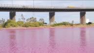MS Shot of bright red algal bloom near Westgate Bridge, Yarra River / Melbourne, Victoria, Australia
