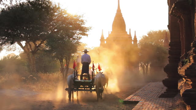 MS Shot of Bullock carts and pagodas at sunset Kingdom of Pagan at sunset AUDIO / Bagan, Burma