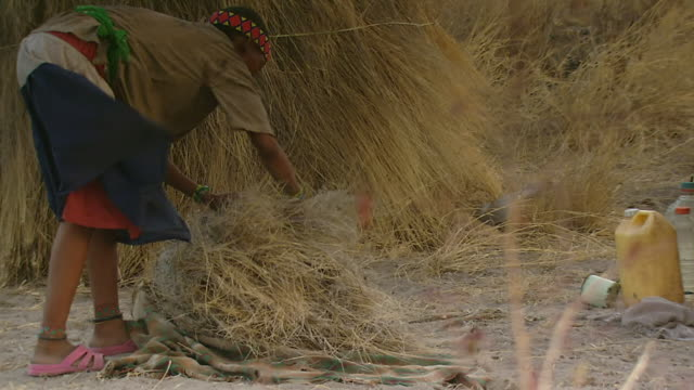 MS TS Shot of bush woman grabbing straw and placing it on roof of hut / Limpopo, South Africa