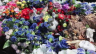CU PAN Shot of Cemetary with Artificial flowers on grave / Sisimiut, Qeqqata, Greenland