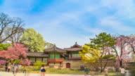 MS T/L Shot of Changdeokgung (UNESCO World Heritage List in 2000) / Seoul, South Korea