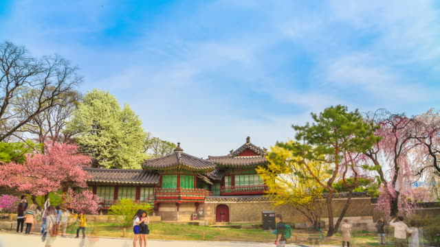 MS T/L Shot of Changdeokgung (UNESCO World Heritage List in 2000) / Seoul, South Korea