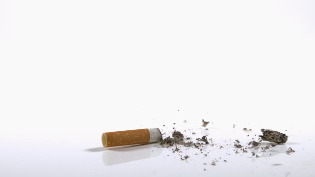 CU SLO MO Shot of Cigarette Butt Falling against White Background / Calvados, Normandy, France