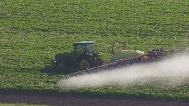 CU AERIAL TS ZO Shot of Combine harvester spraying crops at farm northwest of Grand Forks / North Dakota, United States