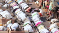 'MS HA Shot of Crowd of male Muslims kneel to prey / Delhi, National Capital Territory, India'