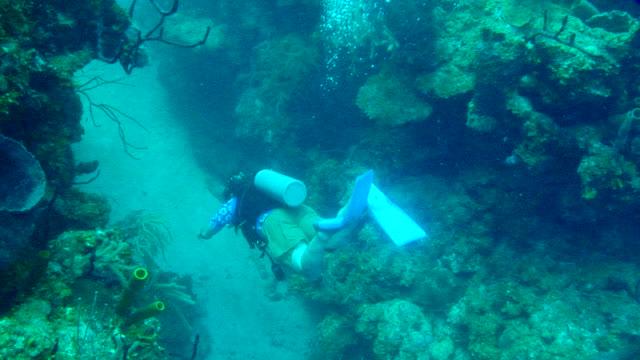 MS POV Shot of diver swims between two large rocks / Calabash Caye, Belize, Belize