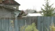 MS POV Shot of dog up on fence barking / Archangelsk, Archangelsk Oblast, Russia