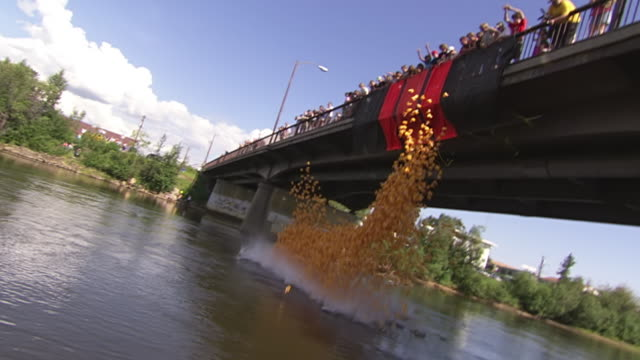 MS ZO ZI Shot of Duck Committee dumping rubber ducks from Wendell Street Bridge into Chena river for Rubber Duckie Race during Golden Days Festival / Fairbanks, Alaska, United States