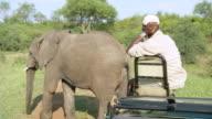 MS PAN Shot of Elephant almost touches tracker at Kapama Lodge / Hoedspruit, Mpumalanga, South Africa
