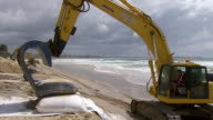 MS TS Shot of Excavator carrying and dropping sandbag / Kingscliff, New South Wales, Australia