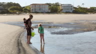 WS Shot of family looking for shells on beach / St Simon's Island, Georgia, United States