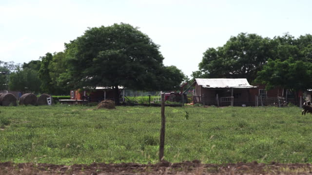 WS Shot of farm area / Manitoba Community, Close to Santa Cruz de la Sierra, Bolivia