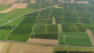 MS AERIAL Shot of farm field at upper middle Rhine valley / Germany