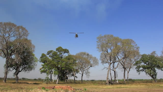 MS Shot of firefighters helicopter landing at farmland / Corumba, Mato Grosso do Sul, Brazil