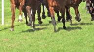 MS TS SLO MO Shot of Gallop horse race / Caen, Normandy, France