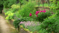 MS Shot of garden with herbaceous perennial / Konz, Rhineland-Palatinate, Germany