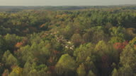 MS TS AERIAL Shot of geese flying over Hocking Hills during sunrise / Ohio, United States