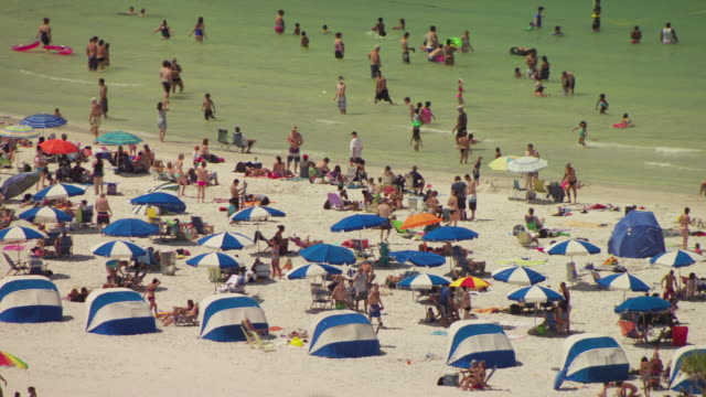 MS AERIAL Shot of hordes of beachgoers wearing swimsuits and using umbrellas / Clearwater Beaches, Florida, United States