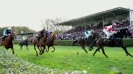 MS SLO MO Shot of Horses gallop down home stretch / Krefeld, North Rhine Westphalia, Germany