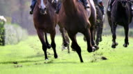 MS SLO MO shot of Horses gallop down home stretch, on hooves / Krefeld, North Rhine Westphalia, Germany