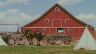 WS Shot of horses in front of red barn
