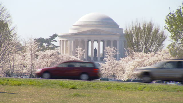 WS Shot of Jefferson Memorial in Washington DC framed by cherry blossom trees in bloom as pedestrians and traffic cross screen in front side / Washington, District of Columbia, United States