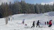 WS Shot of kids sledding on snow in winter / Erbeskopf, Hunsruck, Rhineland Palatinate, Germany