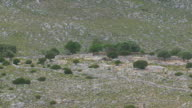 MS AERIAL Shot of landscape and trees with single house / Kalymnos, Cyclades, Greece