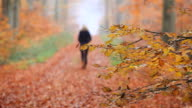 MS R/F  Shot of lonely woman walking through autumnal woodland / Orscholz, Saarland, Germany