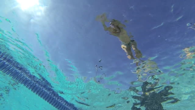 MS TS SLO MO Shot of man on starting blocks, dives into pool / Davis, California, United States
