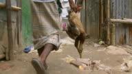 MS POV Shot of man walking on dirt street carrying two dead ducks by their feet / Dhaka, Bangladesh