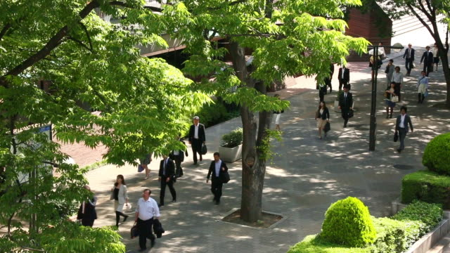 MS PAN T/L Shot of many commuters walking on tree lined sidewalk at morning / Shinjuku ku, Tokyo, Japan