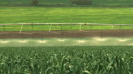 MS PAN Shot of modern agriculture with Large irrigation sprinklers spraying water over lush crops / Jezreel Valley, Israel