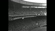 Shot of New York Yankees team in dugout during World Series game in New York City / group of photographers and cameramen stand on field in front of...