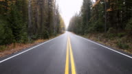 MS TU Shot of newly paved highway in dark evergreen forest on misty day / Kalispell, Montana, United States