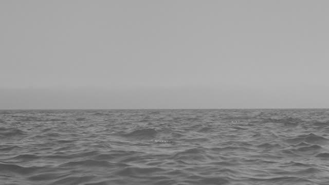 MS LA Shot of over ocean